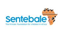 Sentebale (HIV Aids, Lesotho)